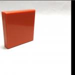 A 113 Navel Orange